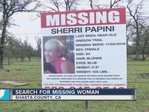 la-me-ln-sherri-papini-missing-california-20161108